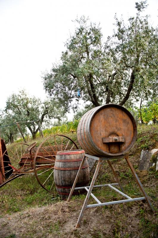 Botte per invecchiamento del vino