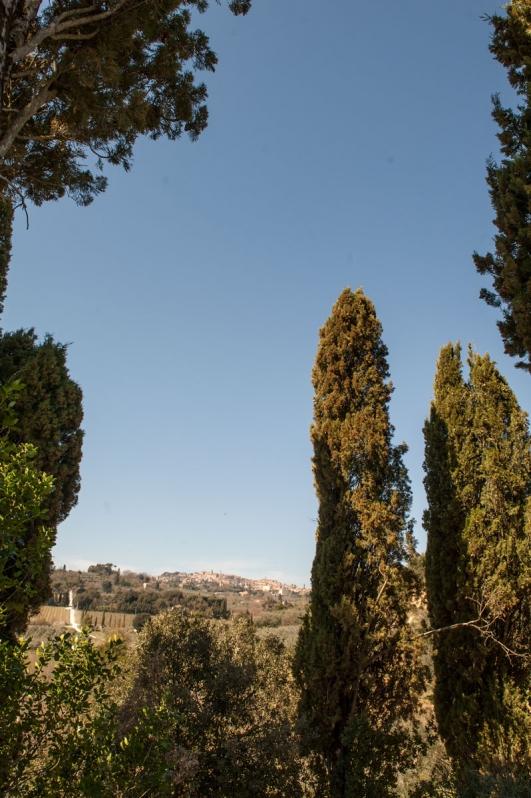Panorama di Montepulciano tra i cipressi secolari