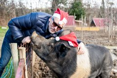 Ciro Buon Natale