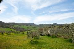 Panorama dalla fattoria